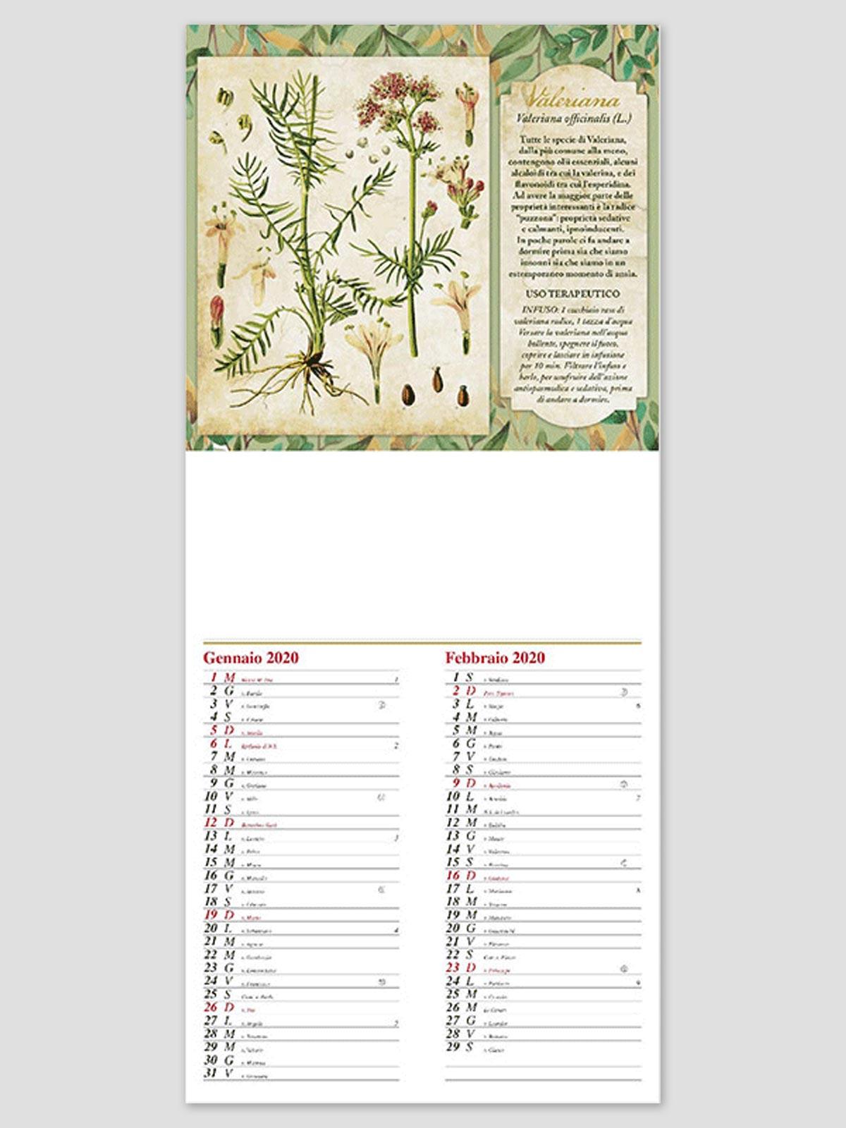 Calendario Aste Trani.Calendario Illustrato Art 904 Giove Erbario Cm 21 5x49